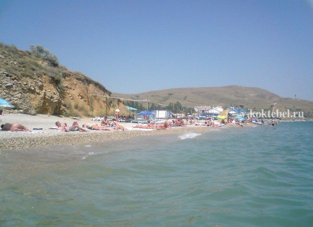 Трансвеститы нудисты на пляже130