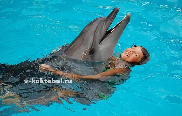 фотография-дельфинарий-в-Коктебеле