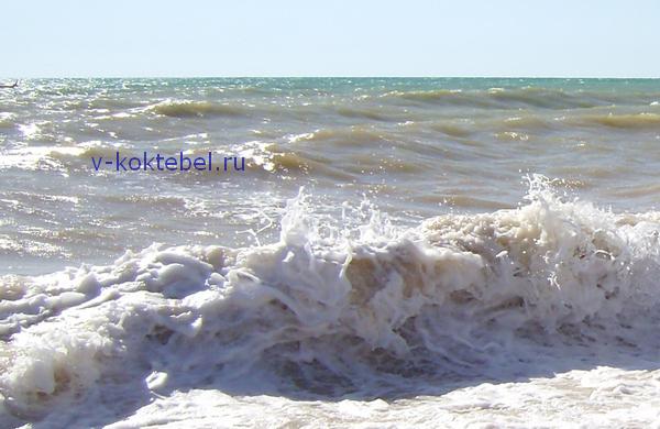 побережье Николаевки в Крыму море